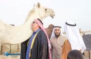 النخب الأوروبية من الشركة إلى الصحراء في جولة تراثية ثقافية.